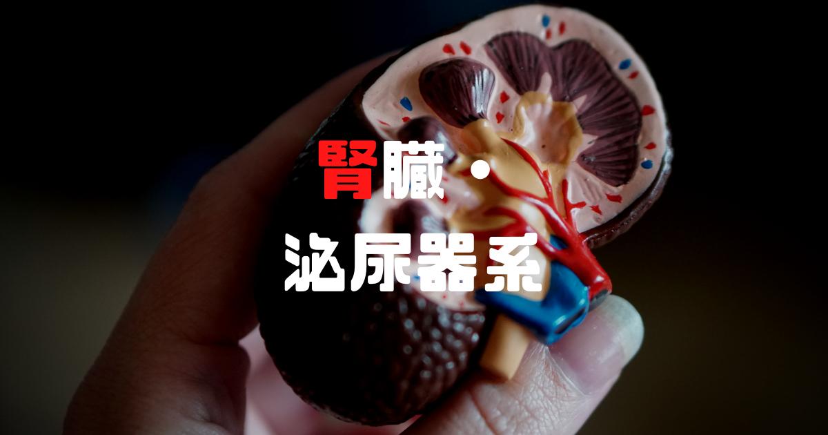 衛生管理者資格、腎臓・泌尿器科を解説